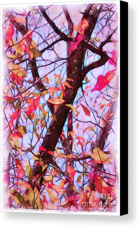 Fall Canvas Print featuring the photograph Crisp Autumn Day by Judi Bagwell