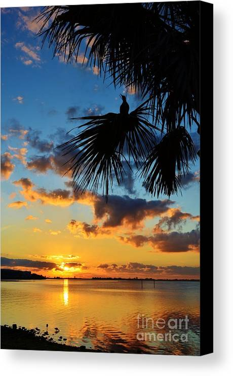 Sunrise Canvas Print featuring the photograph Crow In The New Year by Lynda Dawson-Youngclaus