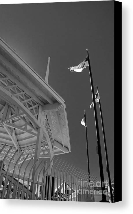 San Diego Canvas Print featuring the photograph Dipper-3 by Baywest Imaging