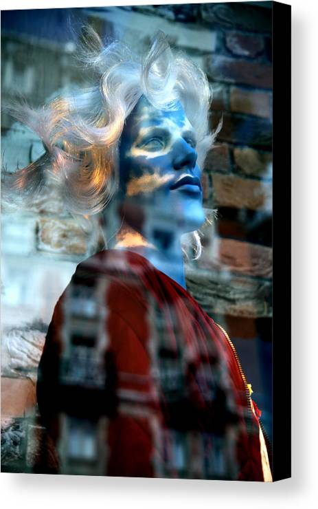 Jezcself Canvas Print featuring the photograph Duncan Wonders About Karma by Jez C Self