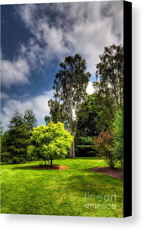 British Canvas Print featuring the photograph English Countryside by Adrian Evans