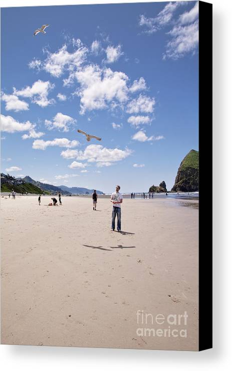 Canon Beach Canvas Print featuring the photograph Flying A Bird Kite Near Haystack Rock Canon Beach Oregon Usa by Sherry Curry