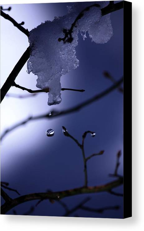 Water Drop Canvas Print featuring the photograph Frozen But Still Wet by Christine Gauthier