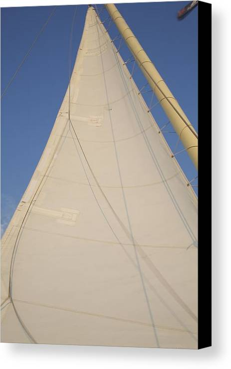 Sailboat Canvas Print featuring the photograph Full Sail by Allan Morrison