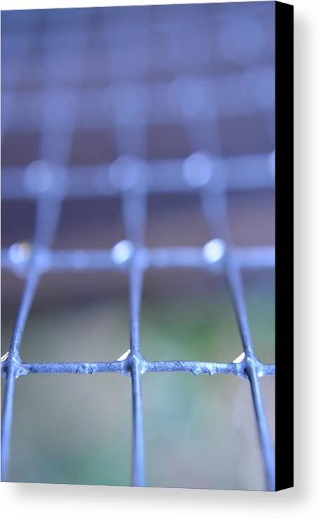 Grid Canvas Print featuring the photograph Grid by Victoria Wise