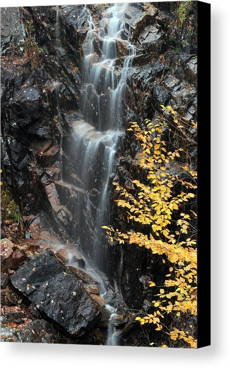 Hadlock Brook Canvas Print featuring the photograph Hadlock Brook Falls by Juergen Roth