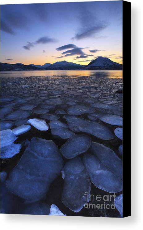 Evenskjer Canvas Print featuring the photograph Ice Flakes Drifting Towards by Arild Heitmann