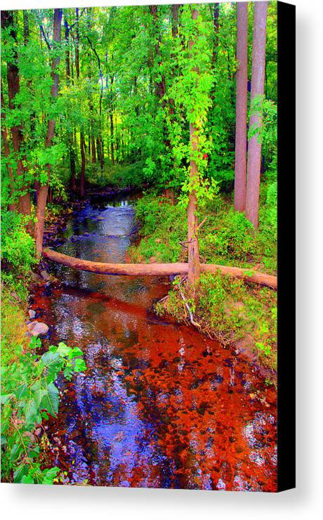 Lake View Canvas Print featuring the digital art Irenes Aftermath by Aron Chervin