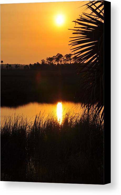 Landscapes Canvas Print featuring the photograph It Was A Perfect Day by Jan Amiss Photography