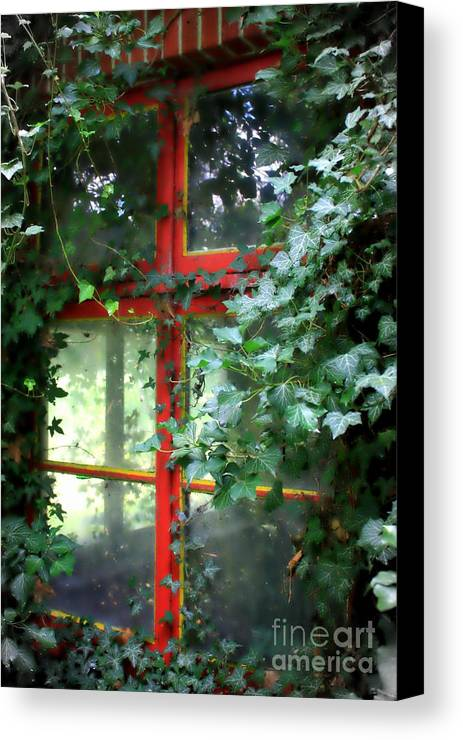 Window Canvas Print featuring the photograph Ivy Embrace by Carol Groenen
