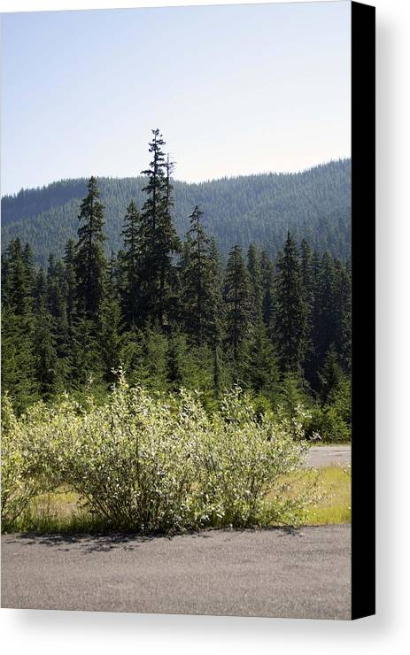 Colors Canvas Print featuring the photograph Landscape - 0017 by S and S Photo