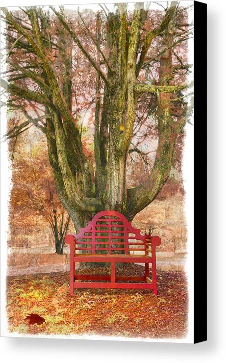 Fine Art Canvas Print featuring the photograph Little Red Bench by Debra and Dave Vanderlaan