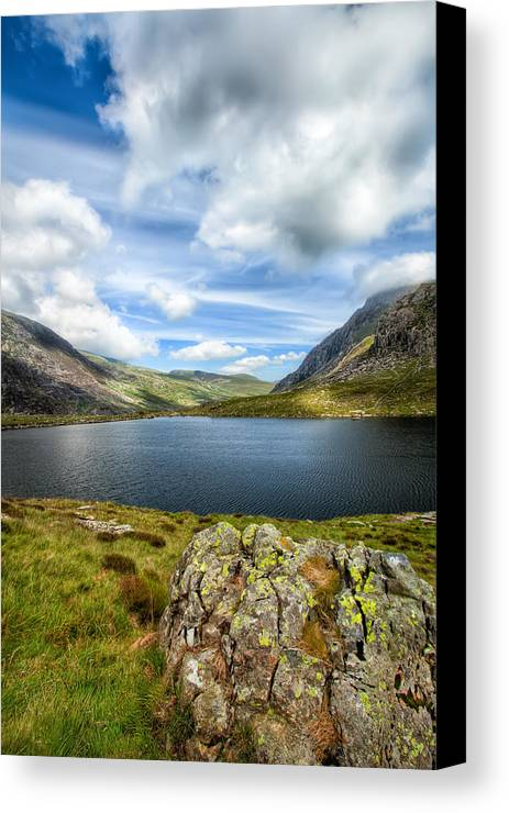 Plants Canvas Print featuring the photograph Llyn Idwal Lake by Adrian Evans