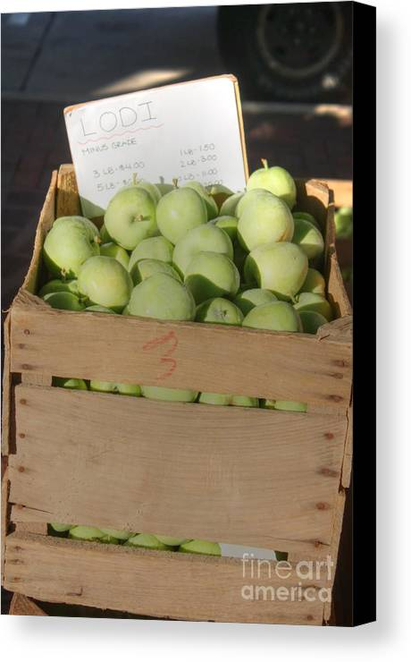 Lodi Apples Canvas Print featuring the photograph Lodi Apples by David Bearden