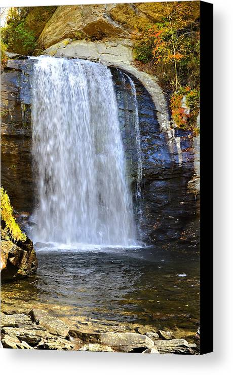 Autumn Canvas Print featuring the photograph Looking Glass Falls by Susan Leggett