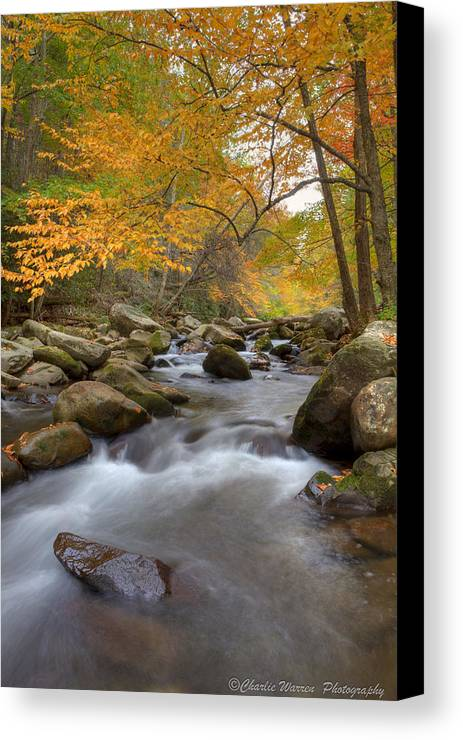 Great Smoky Mountains Canvas Print featuring the photograph Mid Stream II by Charles Warren
