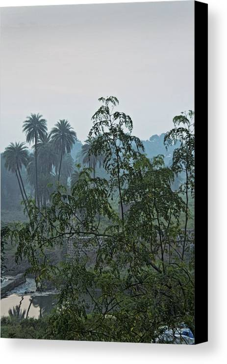 Interesting Canvas Print featuring the photograph Mist Over Mhow Forest by Kantilal Patel
