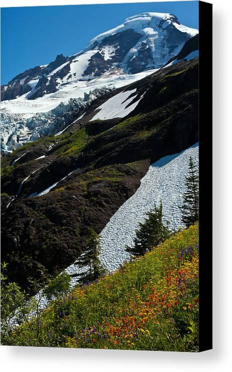 Mt Baker Canvas Print featuring the photograph Mount Baker Floral Bouquet by Mike Reid