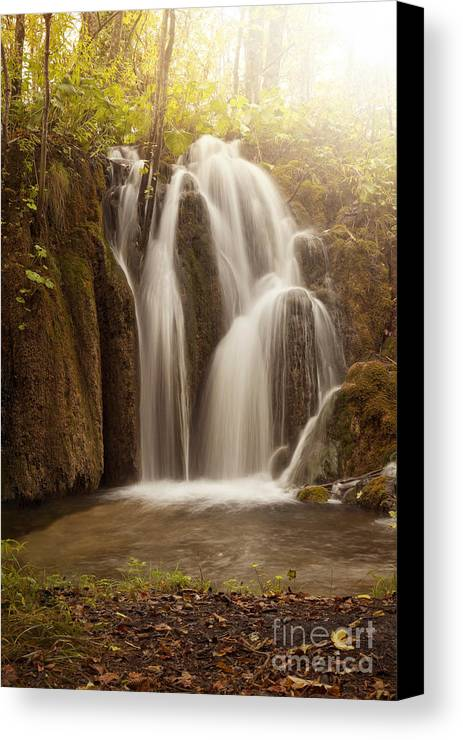 Water Canvas Print featuring the photograph Mystic Waterfall by Silvio Schoisswohl