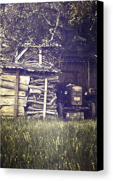 Tree Canvas Print featuring the photograph Old Shed by Joana Kruse