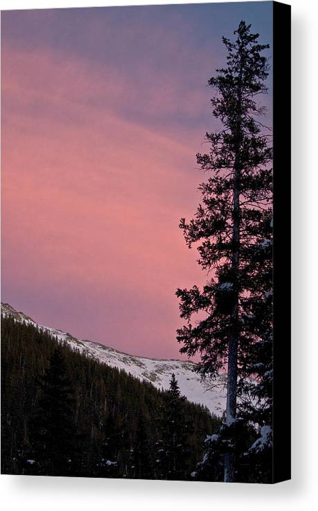 Landscape Canvas Print featuring the photograph Pink Sunset by Lisa Spencer