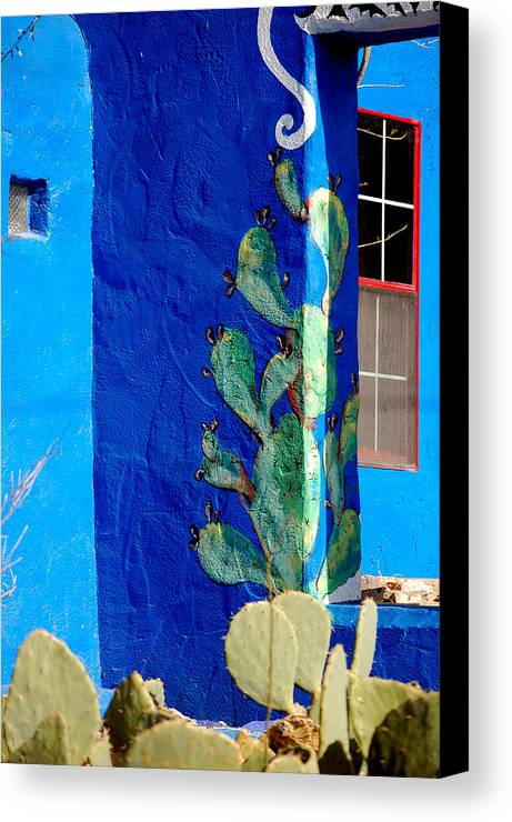 Blue Canvas Print featuring the photograph Prickly View 2 by David Pike