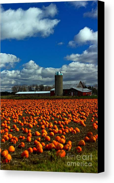 October Canvas Print featuring the photograph Pumpkin Farm by Randall Cogle