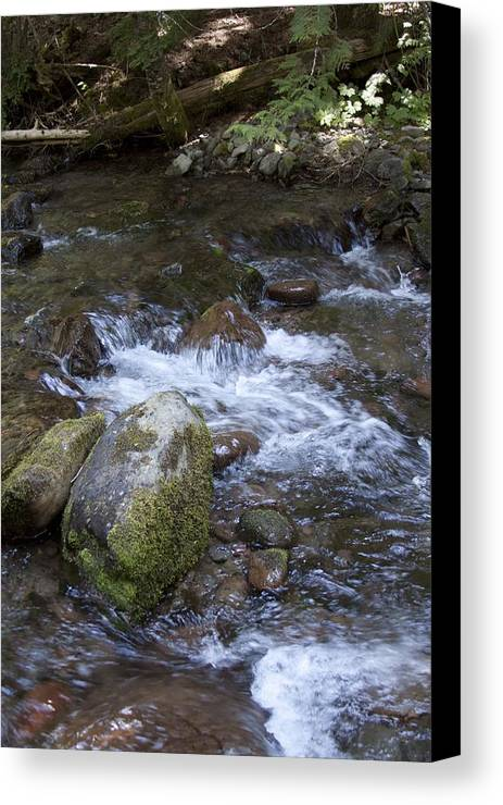 Creek Canvas Print featuring the photograph Rivers-streams-creeks - 0038 by S and S Photo