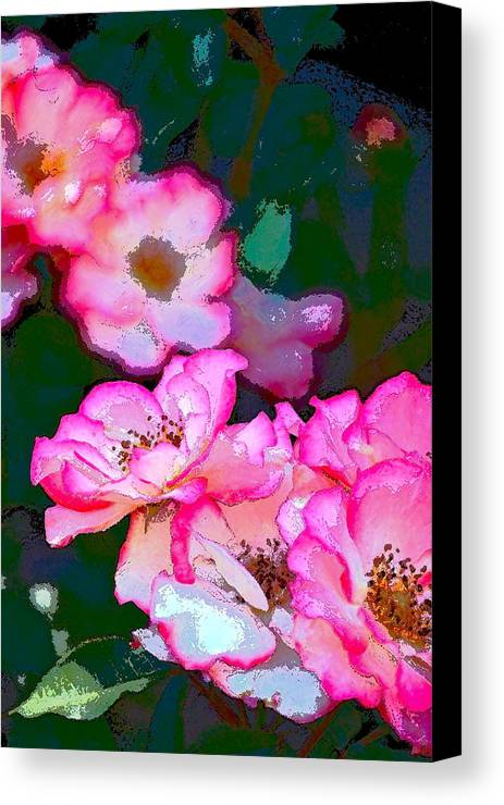 Floral Canvas Print featuring the photograph Rose 130 by Pamela Cooper
