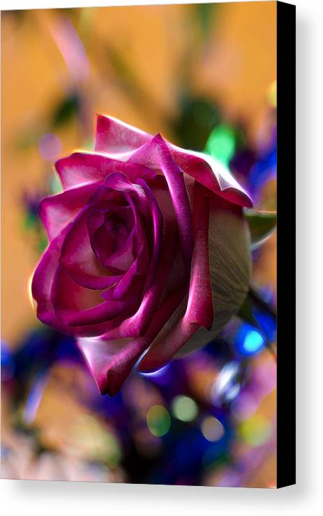Rose Canvas Print featuring the photograph Rose Celebration by Bill Tiepelman