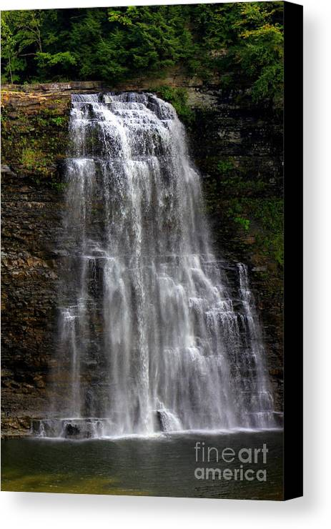 Salmon River Falls Canvas Print featuring the photograph Salmon River Falls by Sherry Dulaney