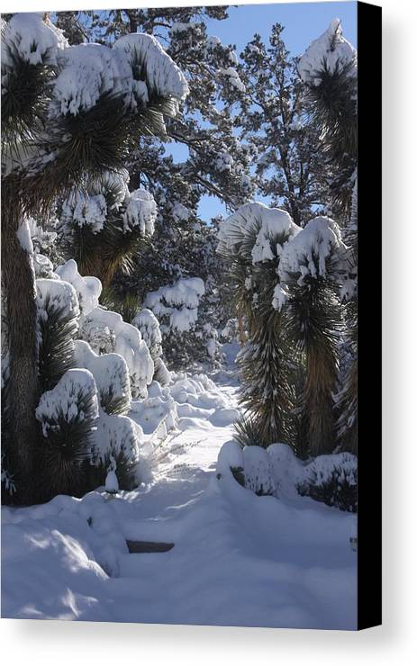 Snow Canvas Print featuring the photograph Snowscape Three by Scott Brown