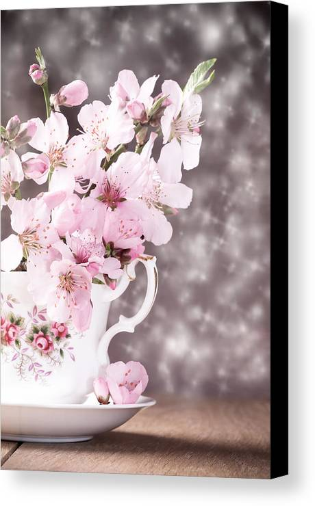 Cherry Canvas Print featuring the photograph Spring Blossom by Amanda Elwell