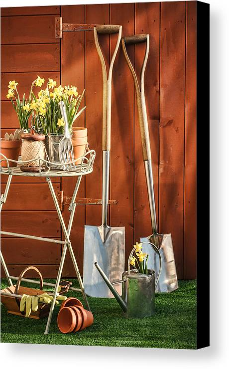 Garden Canvas Print featuring the photograph Spring Gardening by Amanda Elwell