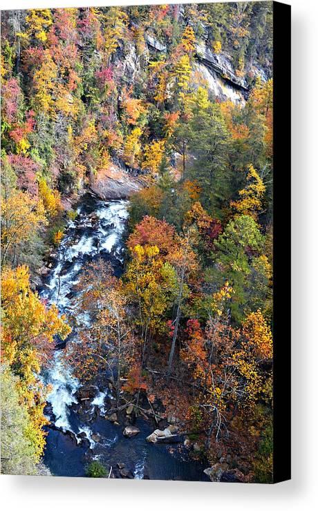 River Canvas Print featuring the photograph Tallulah River Gorge by Susan Leggett
