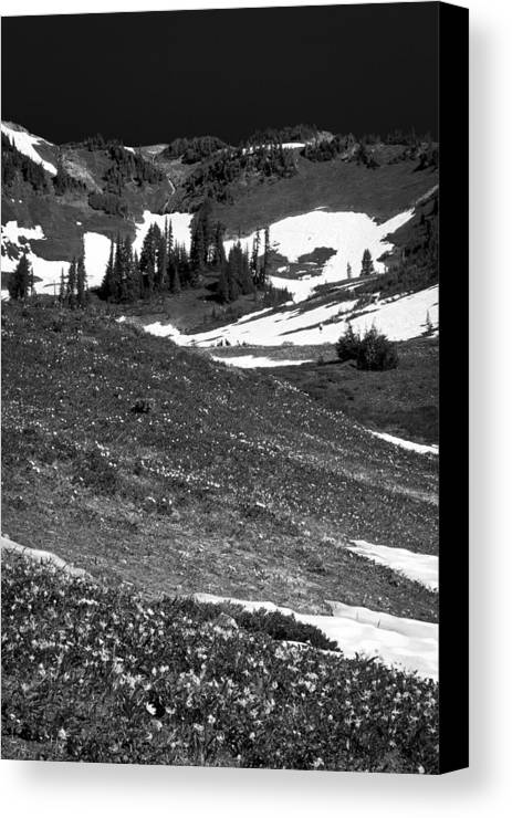 Mount Rainier Canvas Print featuring the photograph The East Slopes Of Mount Rainier II by David Patterson