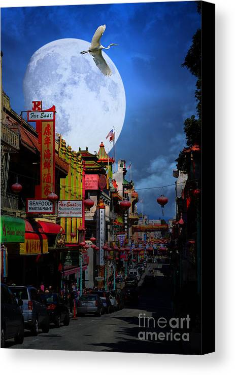 San Francisco Canvas Print featuring the photograph The Great White Egret Of Chinatown . 7d7172 by Wingsdomain Art and Photography