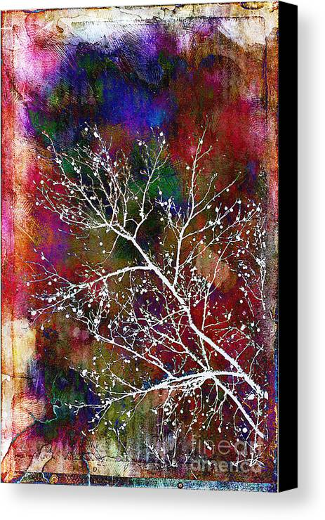 Winter Canvas Print featuring the photograph Winter Wishes by Judi Bagwell