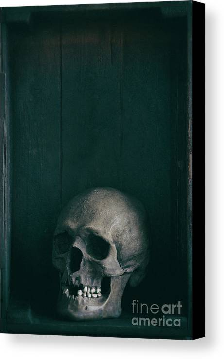 Skull Canvas Print featuring the photograph Human Skull by Lee Avison