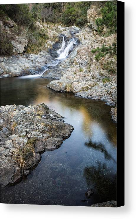 Arenzano Canvas Print featuring the photograph Silky Stream by Claudio Bergero