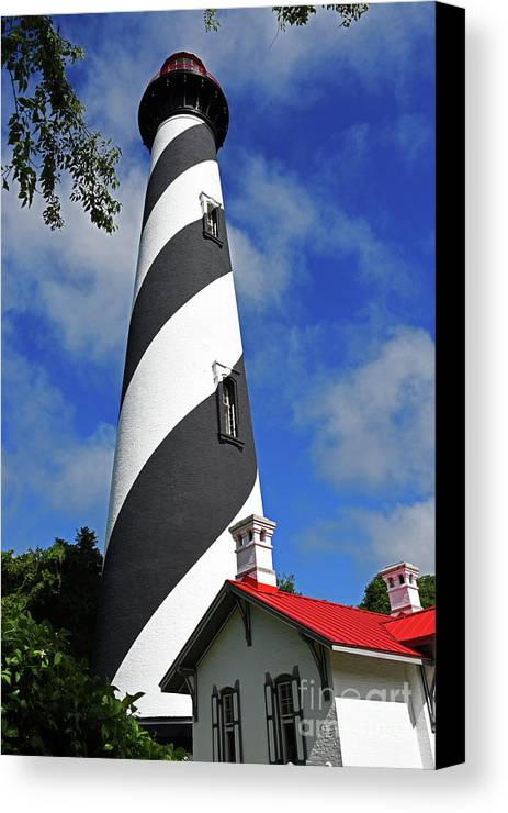 North Florida Canvas Print featuring the photograph Standing Tall by Rick Bravo