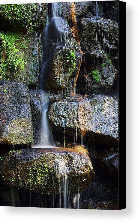 Asian Canvas Print featuring the photograph Waterfall by Carlos Caetano