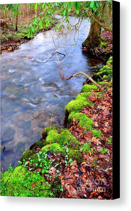 West Virginia Canvas Print featuring the photograph Middle Fork Of Williams River by Thomas R Fletcher