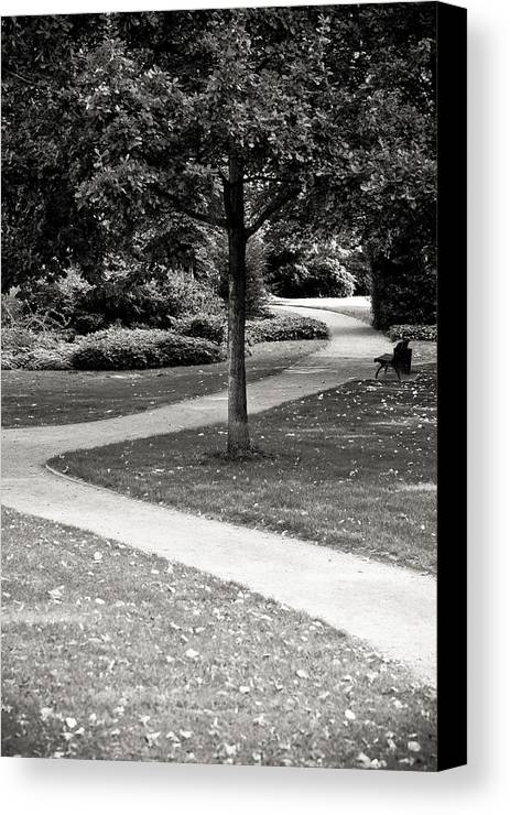 Park Canvas Print featuring the photograph A Nice Walk by Edward Myers