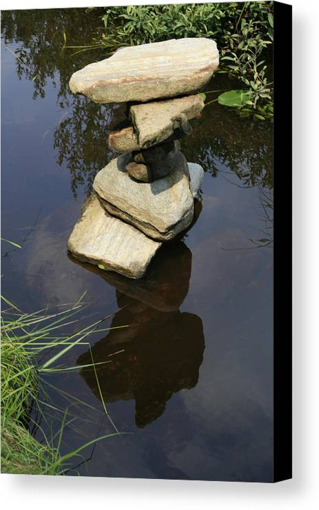 Nature Canvas Print featuring the photograph Above And Below by Alan Rutherford