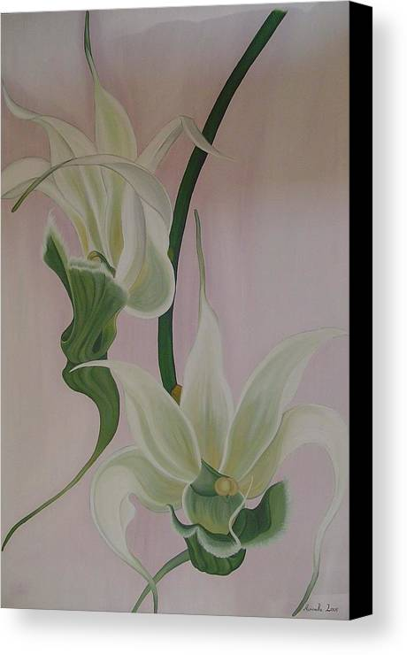 Marinella Owens Canvas Print featuring the painting Aeranthes Peyrot Orchide by Marinella Owens