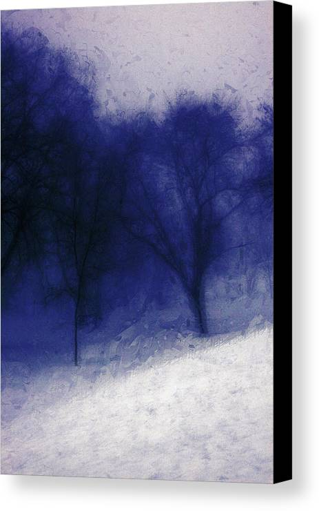 Landscape Canvas Print featuring the photograph Another Blue Day by Julie Lueders