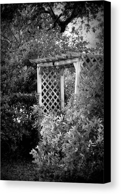 Arbor Canvas Print featuring the photograph Arbor - Bw by Beth Vincent