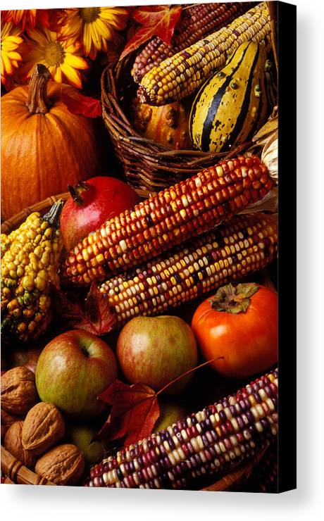 Autumn Canvas Print featuring the photograph Autumn Harvest by Garry Gay