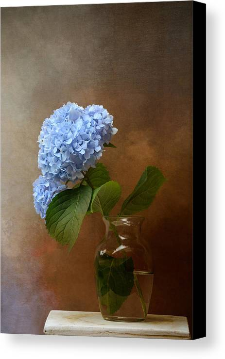 Blue Hydrangea In A Vase by Jai Johnson